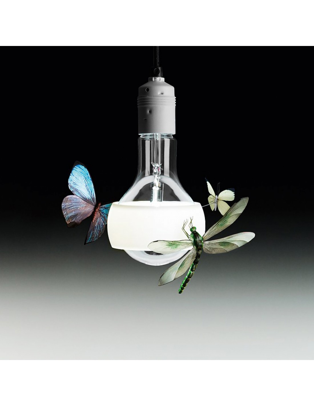 SUSPENSION JOHNNY B. BUTTERFLY