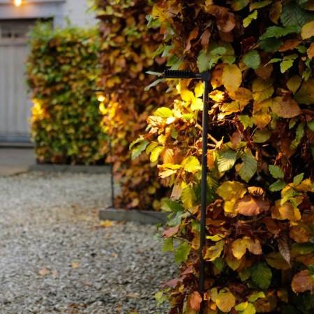 Lampadaire extérieur Spiky sur piquet 100 cm éclairé dans végétation de la marque Royal Botania - Valente Design