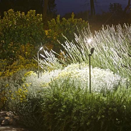 Mise en situation Spot Spiky sur piquet 100 cm  de la marque Royal Botania - Valente Design