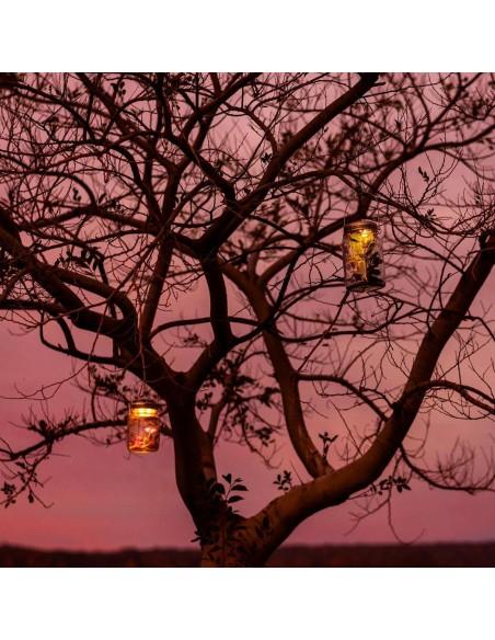 Lampe solaire sans fil SONNENGLAS® Valente Design dans arbre au couché de soleil