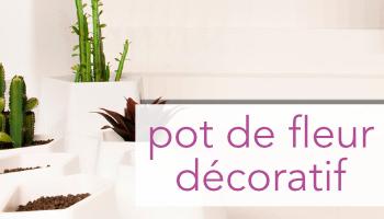 Pot de fleur décoratif